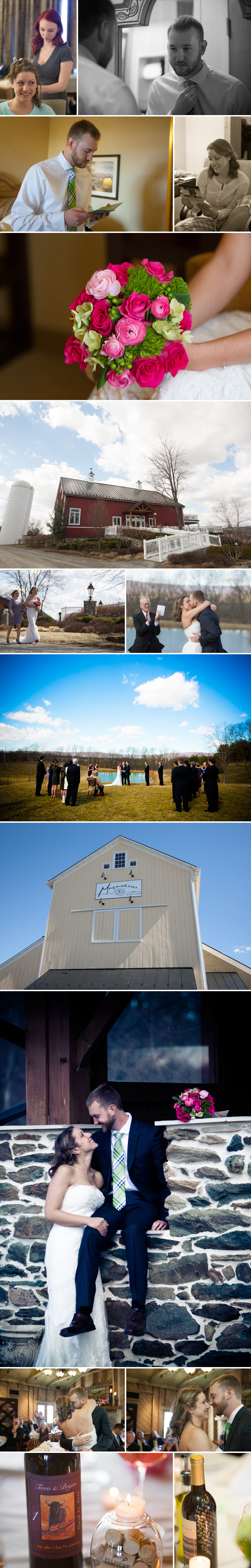 loudoun county wedding